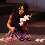 Lucretia, The Rape of Lucretia
